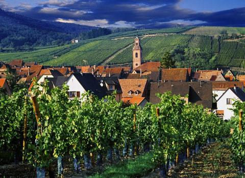 Elsass-Riquewihr